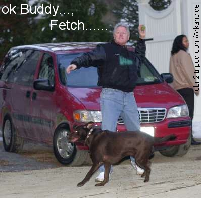Buddy Former First Dog